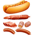 Different kind of meat and hotdog vector image vector image