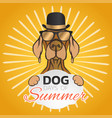 dog days summer logo icon design vector image
