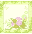 Floral background Ipomoea vector image vector image