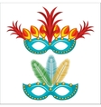 carnival mask with feathers vector image