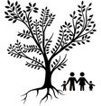 family tree black vector image