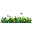 isolated grass for decor vector image vector image