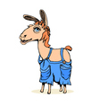 lama animal hand draw sketch vector image