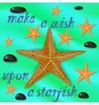 Orange Starfish and Stones Poster vector image