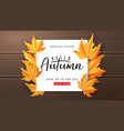 seasonal autumn sale banner vector image vector image