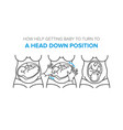 turn baby to a head down position in the womb vector image