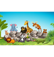 Wild animals sitting on the rock vector image vector image