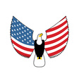 Eagle with American flag wings USA national symbol vector image
