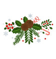 holly berry pine branch and cones snowflakes vector image vector image