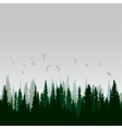 Panorama of wild coniferous forest vector image vector image