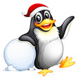 penguin character with snowball vector image