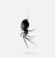 Scary Spider vector image vector image