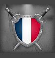 flag of france the shield with national flag two vector image vector image