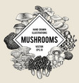 mushroom hand drawn set of vector image