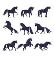 mythology set of unicorns silhouette vector image