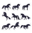 mythology set unicorns silhouette vector image