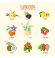 Set of superfoods in flat style vector image vector image