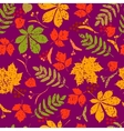 abstract seamless floral pattern Colorful vector image vector image