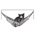 cat in hammock vintage vector image vector image