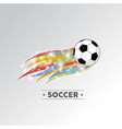 Colorful soccer ball vector image
