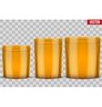 Mockup Sport Nutrition Foil Package vector image vector image