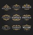 Vintage royal flourish frame logo decorative