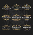 vintage royal flourish frame logo decorative vector image vector image