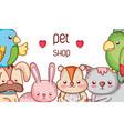 animals pet shop cute cartoons vector image