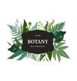 botanical background hand drawn wallpaper vector image vector image