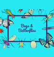 hand drawn insects background with place vector image vector image
