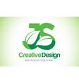 js green leaf letter design logo eco bio leaf vector image vector image