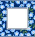 nemophila baby blue eyes flower on indigo banner vector image vector image