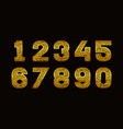 numbers with golden glitter texture vector image
