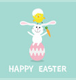 rabbit baby chick bird friends sitting on vector image