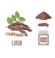 Superfood carob set in flat style vector image vector image