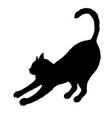 black cat silhouette isolated on white background vector image