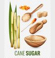 cane sugar transparent set vector image vector image