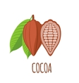 Cocoa icon in flat style on white background vector image vector image