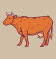 cow icon hand drawn style vector image vector image