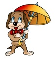 dog with umbrella vector image vector image
