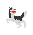 siberian husky dog character playing with red disk vector image
