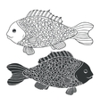 Two black and white hand-drawn fish Detailed vector image