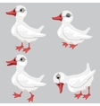 cartoon white duck in four poses animals vector image vector image