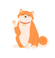 cute kawaii dog shiba inu breed waving with paw vector image