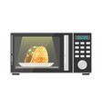icon for web microwave oven vector image vector image