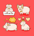 pig chinese new year symbol of 2019 vector image vector image