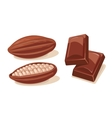 Two chocolate pieces and fuits of cocoa beans vector image