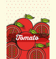 vegetable tomato on the dotted background vector image