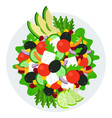 vegetarian salad in a plate top view icon flat vector image vector image