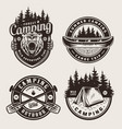 vintage monochrome camping logotypes vector image vector image
